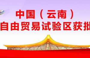 高压打击走私 为云南建设自由贸易试验区创造良好营商环境