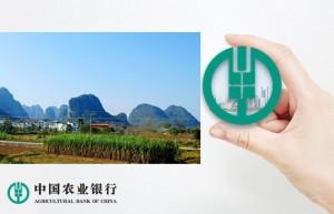"""经济日报:广西金融助力端稳全国""""糖罐子"""""""