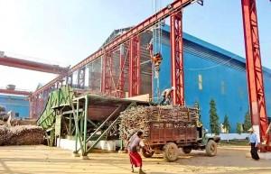 缅甸糖业陷入困境 糖商、糖厂、蔗农日子不好过!专家支招
