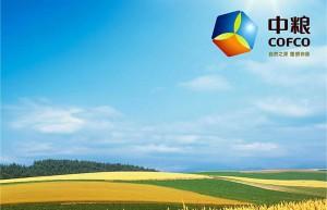 中粮集团:全力提高生产产能 全力保障民生供应