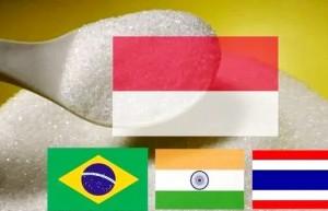 伊朗面临制裁 印尼将成为印度食糖的最大进口国