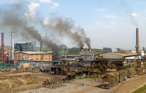 10月下半月巴西主产区产糖174万吨 同比增长14.4%