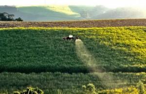 云南蔗糖大县–耿马县推进甘蔗生产机械化 部分作业机械化率达95%