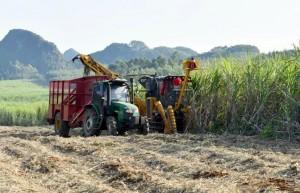 广西扶绥成全国首个甘蔗生产全程机械化示范县 机械化率达69%