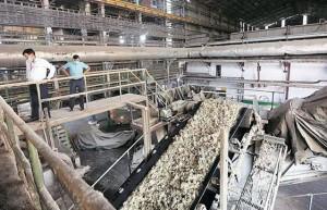 截至12月15日印度已产糖738万吨 同比增长61%
