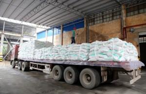截至3月底广西产糖625万吨 产销率同比下降